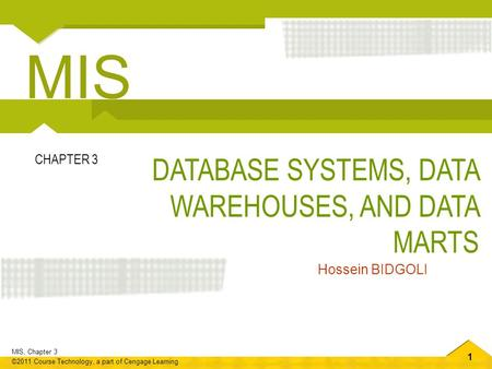 MIS DATABASE SYSTEMS, DATA WAREHOUSES, AND DATA MARTS CHAPTER 3
