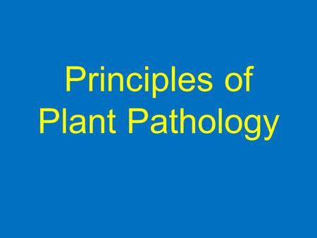 Principles of Plant Pathology Topic 1 Bacteriology.