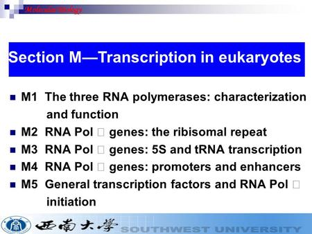 M1 The three RNA polymerases: characterization and function M2 RNA Pol Ⅰ genes: the ribisomal repeat M3 RNA Pol Ⅲ genes: 5S and tRNA transcription M4 RNA.