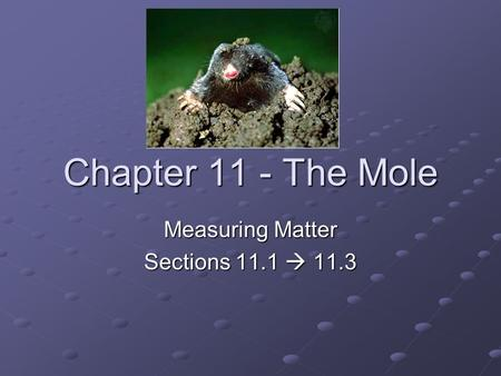 Chapter 11 - The Mole Measuring Matter Sections 11.1  11.3.