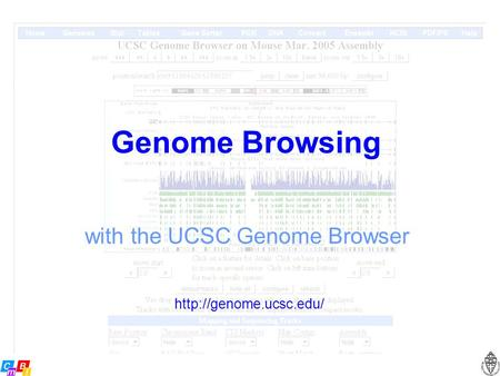 Genome Browsing with the UCSC Genome Browser