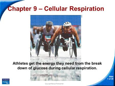 Slide 1 of 39 Copyright Pearson Prentice Hall Chapter 9 – Cellular Respiration Athletes get the energy they need from the break down of glucose during.