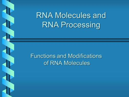 RNA Molecules and RNA Processing Functions and Modifications of RNA Molecules.