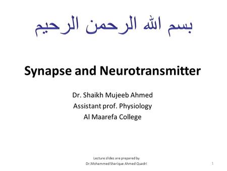 Synapse and Neurotransmitter Dr. Shaikh Mujeeb Ahmed Assistant prof. Physiology Al Maarefa College 1 Lecture slides are prepared by Dr.Mohammed Sharique.