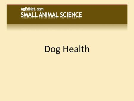 Dog Health. Dogs are carnivores...  But they can eat some plants  Nutritional health depends on receiving proper amounts of: Water Protein Fats Carbohydrates.