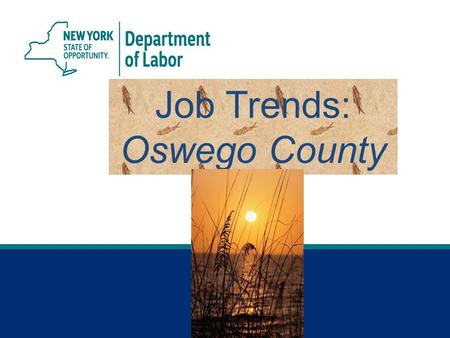 Job Trends: Oswego County. 2 Syracuse MSA* *Syracuse Metropolitan Statistical Area (MSA) includes Madison, Onondaga and Oswego counties. Jobs Gained or.