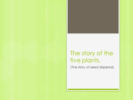 The story of the five plants. (The story of seed dispersal)
