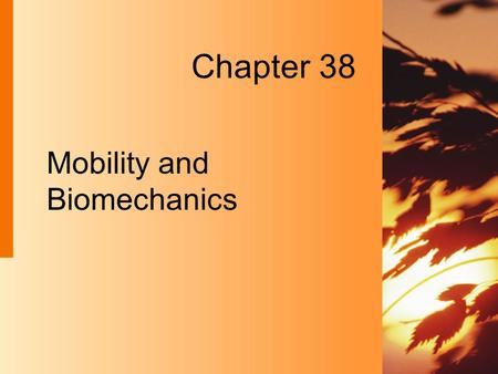 Chapter 38 Mobility and Biomechanics. 38-2 Copyright 2004 by Delmar Learning, a division of Thomson Learning, Inc. Overview of Mobility  Mobility Ability.