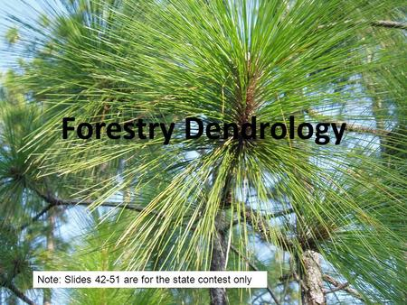 Forestry Dendrology Note: Slides 42-51 are for the state contest only.