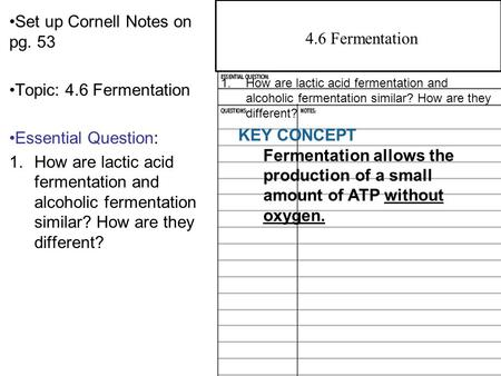 Set up Cornell Notes on pg. 53