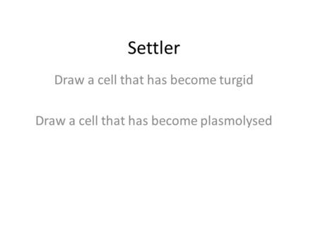 Settler Draw a cell that has become turgid