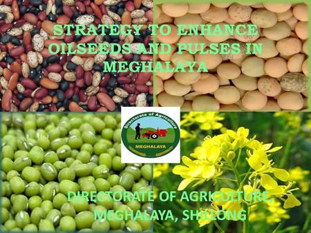 STRATEGY TO ENHANCE OILSEEDS AND PULSES IN MEGHALAYA DIRECTORATE OF AGRICULTURE, MEGHALAYA, SHILLONG.