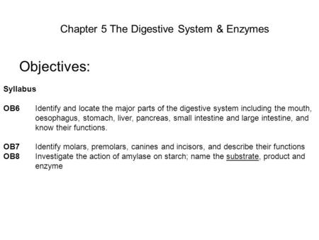 Chapter 5 The Digestive System & Enzymes Objectives: Syllabus OB6Identify and locate the major parts of the digestive system including the mouth, oesophagus,