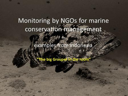 "Monitoring by NGOs for marine conservation management – examples from Indonesia ""The big Grouper in the room"""