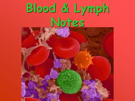 Blood & Lymph Notes. Blood is unique because it is the only liquid tissue.