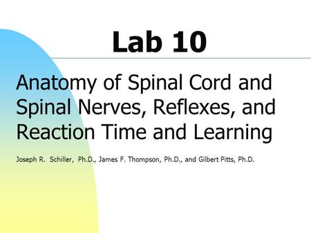 Lab 10 Anatomy of Spinal Cord and Spinal Nerves, Reflexes, and Reaction Time and Learning Joseph R. Schiller, Ph.D., James F. Thompson, Ph.D., and Gilbert.