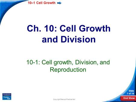 Ch. 10: Cell Growth and Division
