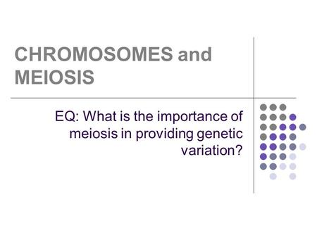 CHROMOSOMES and MEIOSIS