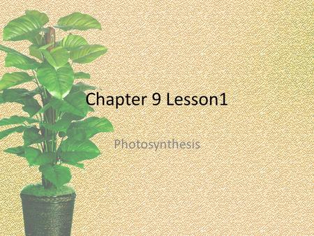 Chapter 9 Lesson1 Photosynthesis. Chapter 9 Big Question.