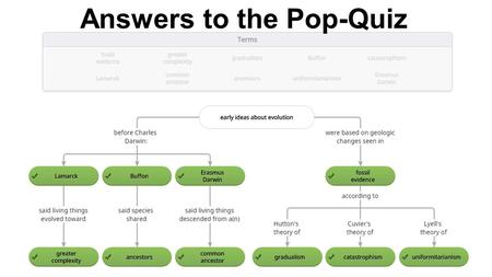 Answers to the Pop-Quiz