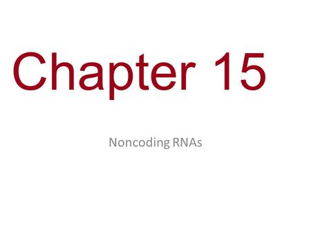 Chapter 15 Noncoding RNAs. You Must Know The role of noncoding RNAs in control of cellular functions.