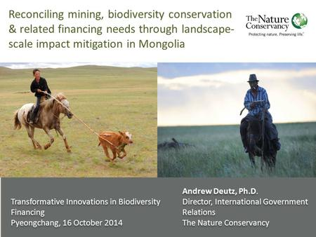 Reconciling mining, biodiversity conservation & related financing needs through landscape- scale impact mitigation in Mongolia Transformative Innovations.