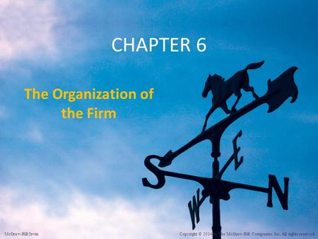 The Organization of the Firm