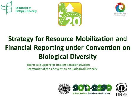 Strategy for Resource Mobilization and Financial Reporting under Convention on Biological Diversity Technical Support for Implementation Division Secretariat.