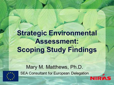 Strategic Environmental Assessment: Scoping Study Findings Mary M. Matthews, Ph.D. SEA Consultant for European Delegation.