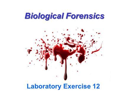 Biological Forensics Ppt Video Online Download
