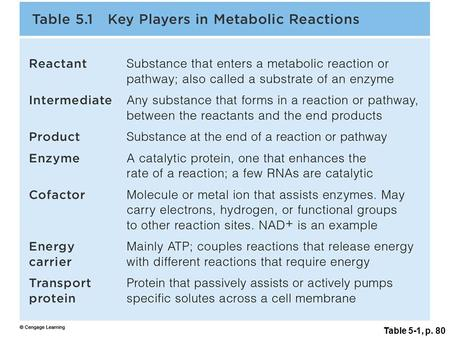 Table 5-1, p. 80. Energy In, Energy Out Chemical reactions –Reactants (molecules in) –Products (molecules out) Endergonic reactions (energy-requiring)
