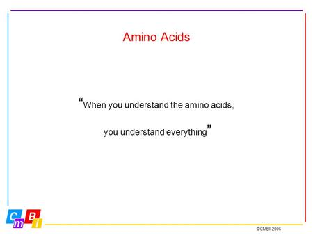 "©CMBI 2006 Amino Acids "" When you understand the amino acids, you understand everything """
