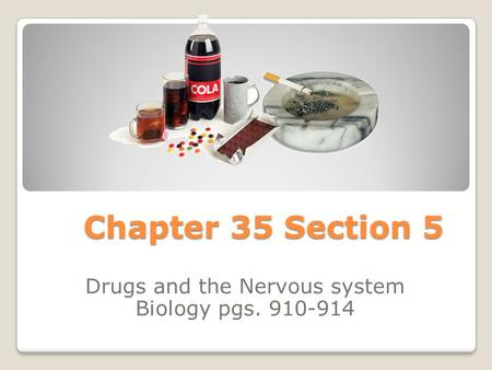 Drugs and the Nervous system Biology pgs
