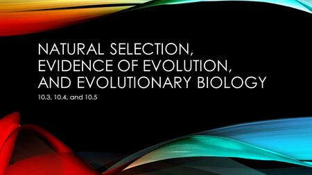 NATURAL SELECTION, EVIDENCE OF EVOLUTION, AND EVOLUTIONARY BIOLOGY 10.3, 10.4, and 10.5.