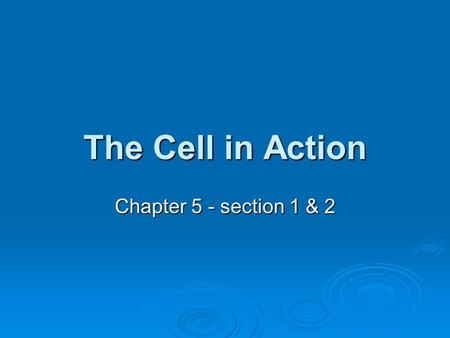 The Cell in Action Chapter 5 - section 1 & 2.