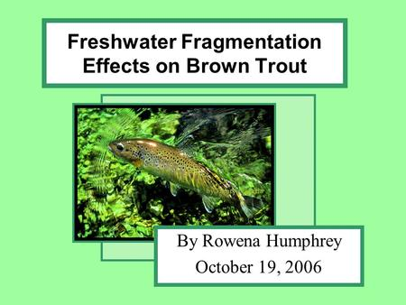 Freshwater Fragmentation Effects on Brown Trout By Rowena Humphrey October 19, 2006.