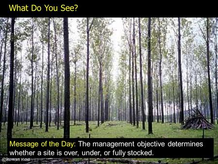 What Do You See? Message of the Day: The management objective determines whether a site is over, under, or fully stocked.