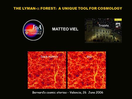 MATTEO VIEL THE LYMAN-  FOREST: A UNIQUE TOOL FOR COSMOLOGY Bernard's cosmic stories – Valencia, 26 June 2006 Trieste Dark matter Gas.