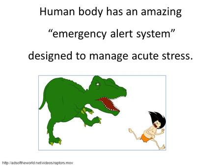 "Human body has an amazing ""emergency alert system"" designed to manage acute stress."