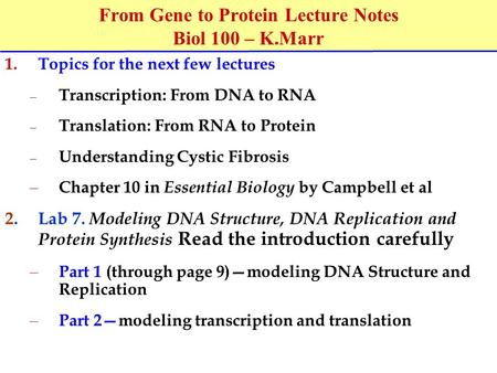 From Gene to Protein Lecture Notes Biol 100 – K.Marr
