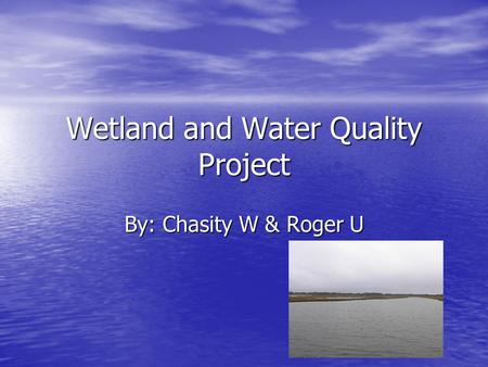 Wetland and Water Quality Project By: Chasity W & Roger U.