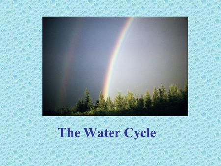The Water Cycle Step 1 - Moisture condenses in the sky to form clouds.