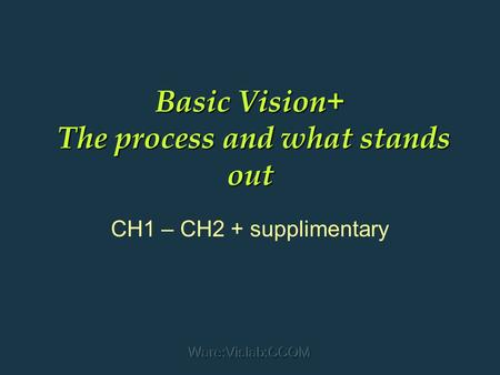 Ware:Vislab:CCOM Basic Vision+ The process and what stands out CH1 – CH2 + supplimentary.