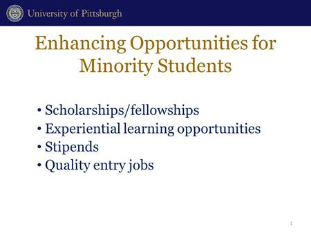 Enhancing Opportunities for Minority Students Scholarships/fellowships Experiential learning opportunities Stipends Quality entry jobs 1.
