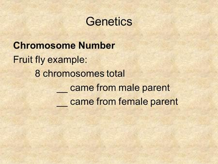 Genetics <strong>Chromosome</strong> Number Fruit fly example: 8 <strong>chromosomes</strong> total