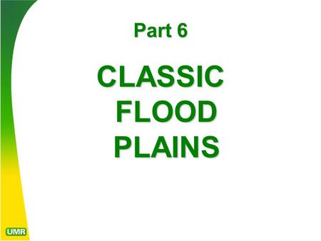 Part 6 CLASSIC FLOOD PLAINS. FLOOD PLAINS Flood plains are those alluvial valleys that are periodically subject to inundation by flooding of a natural.