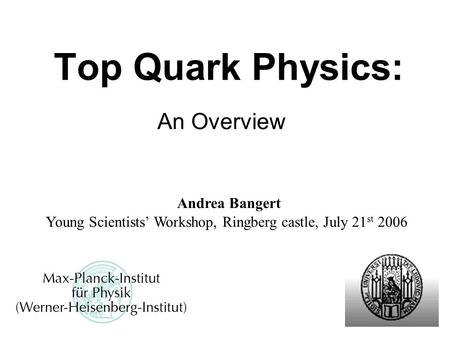 Top Quark Physics: An Overview Young Scientists' Workshop, Ringberg castle, July 21 st 2006 Andrea Bangert.