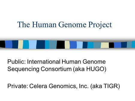 The Human Genome Project Public: International Human Genome Sequencing Consortium (aka HUGO) Private: Celera Genomics, Inc. (aka TIGR)
