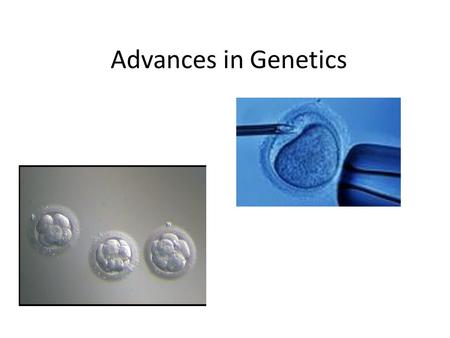 Advances in Genetics. Selective Breeding Process of selecting a few organisms with desired traits as parents for the next generation.