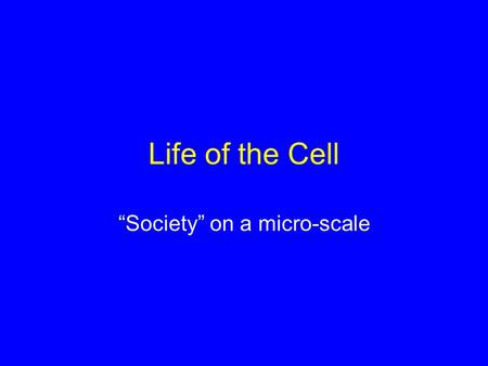 "Life of the Cell ""Society"" on a micro-scale. Learning Objectives 1.What are the characteristics that distinguish prokaryotic and eukaryotic cells? Which."